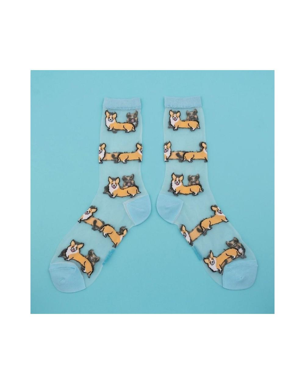 Chaussettes rigolotes transparentes chien Corgi de la marque Coucou Suzette